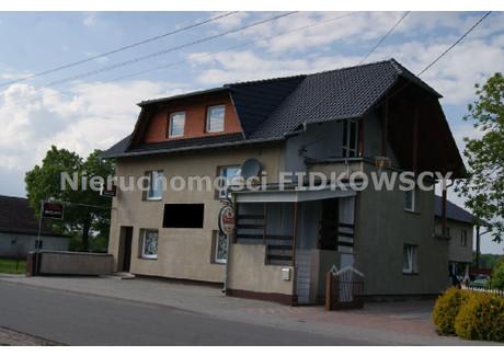 Lokal na sprzedaż - Brzezie, Dobrzeń Wielki, Opolski, 450 m², 950 000 PLN, NET-LS-574