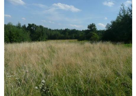 Działka na sprzedaż - Bęczarka, Myślenice, Myślenicki, 3200 m², 65 000 PLN, NET-3188