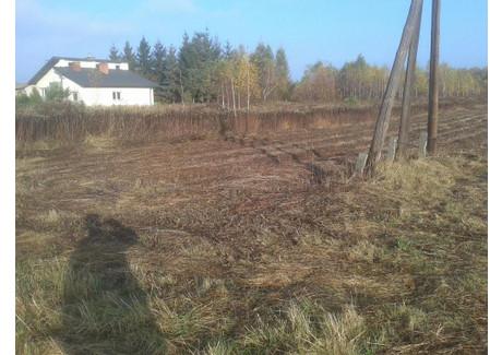 Działka na sprzedaż - Kłaj, Kłaj (gm.), Wielicki (pow.), 3700 m², 185 000 PLN, NET-4004