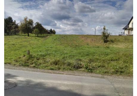 Działka na sprzedaż - Polanka, Myślenice (gm.), Myślenicki (pow.), 9600 m², 115 000 PLN, NET-m706