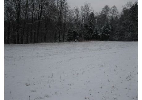 Działka na sprzedaż - Osieczany, Myślenice (gm.), Myślenicki (pow.), 1351 m², 104 000 PLN, NET-m785/b