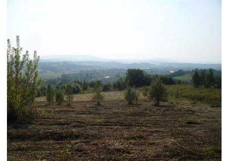 Działka na sprzedaż - Winiary, 2500 m², 173 000 PLN, NET-2695/A