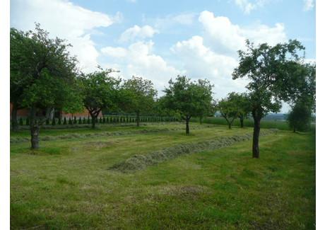 Działka na sprzedaż - Nowe Kamienice, Ostrów Wielkopolski (gm.), Ostrowski (pow.), 1250 m², 110 000 PLN, NET-G0203