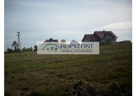Działka do wynajęcia - Dobrzewino, Szemud, Wejherowski, 2300 m², 1000 PLN, NET-3/260/OGW