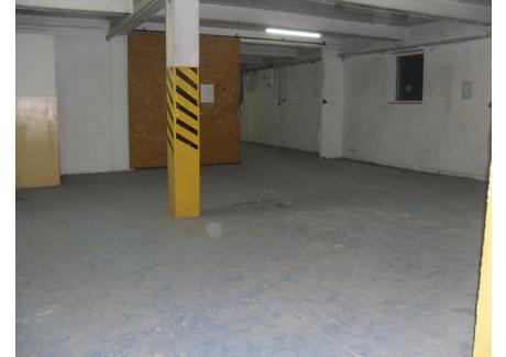 Magazyn, hala do wynajęcia - Wielicki, 150 m², 2025 PLN, NET-104