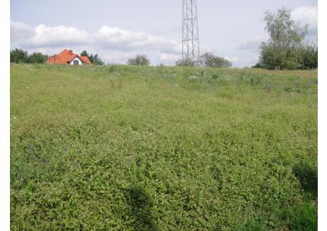 Działka na sprzedaż - Gaj, Mogilany (gm.), Krakowski (pow.), 2400 m², 480 000 PLN, NET-166