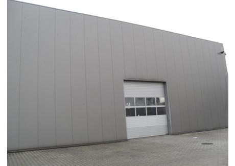Centrum dystrybucyjne do wynajęcia - Skawina, Skawina (gm.), Krakowski (pow.), 1000 m², 16 000 PLN, NET-115