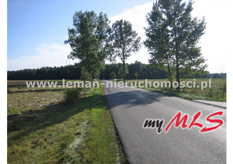Działka na sprzedaż - Krasienin, Niemce, Lubelski, 5200 m², 260 000 PLN, NET-LEM-GS-2709