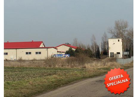 Działka na sprzedaż - Kołbaskowo, 3450 m², 340 000 PLN, NET-29/HXR/PS