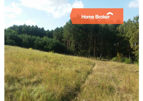 Działka na sprzedaż - Sudoł, Zielona Góra, 3340 m², 167 000 PLN, NET-164928
