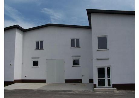 Obiekt na sprzedaż - Zielona Góra, 2500 m², 1 300 000 PLN, NET-ZG01473