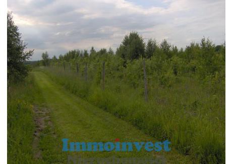 Działka na sprzedaż - Skowrony, Godkowo, Elbląski, 67 700 m², 100 196 PLN, NET-II051