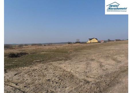 Działka na sprzedaż - Stare Bielice, Biesiekierz, Koszaliński, 1534 m², 122 720 PLN, NET-1902777