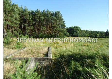 Działka na sprzedaż - Drzewce, Białe Błota, Bydgoski, 1094 m², 120 000 PLN, NET-JDK-GS-366