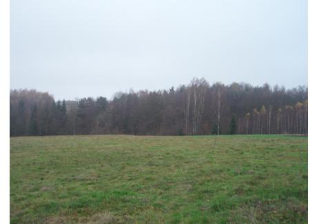 Działka na sprzedaż - Konary, Mogilany (gm.), Krakowski (pow.), 2500 m², 98 000 PLN, NET-50
