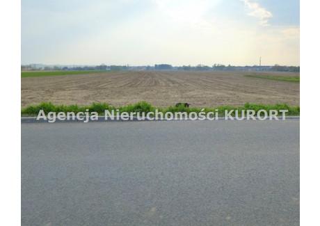 Działka na sprzedaż - Słońsk Górny, Ciechocinek, Aleksandrowski, 68 200 m², 3 410 000 PLN, NET-GS-672-2