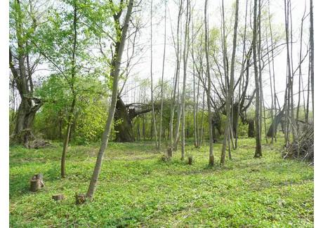 Działka na sprzedaż - Rajszew, Jabłonna, Legionowski, 3000 m², 180 000 PLN, NET-140