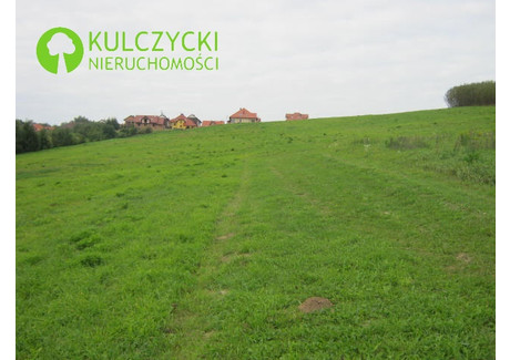 Działka na sprzedaż - Michałowice, Krakowski, 26 400 m², 3 300 000 PLN, NET-4979
