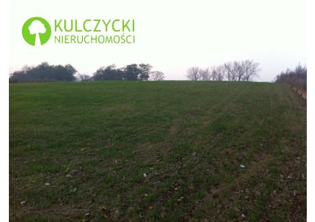 Działka na sprzedaż - Dąbrowskich Michałowice, Krakowski, 3500 m², 560 000 PLN, NET-5233