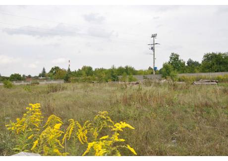 Działka na sprzedaż - Zduńska Wola, Zduńskowolski, 5500 m², 1 925 000 PLN, NET-KWK-GS-575-1