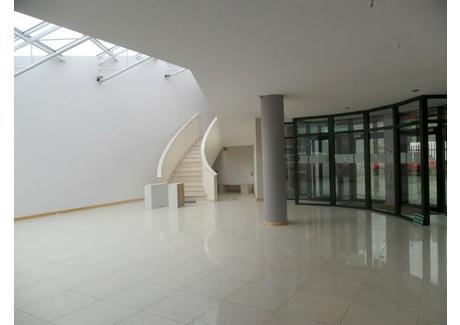 Lokal do wynajęcia - Zduńska Wola, Zduńskowolski, 70 m², 1750 PLN, NET-KWK-LW-735-1