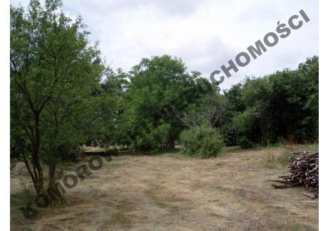 Działka na sprzedaż - Ogrodowa Gołotczyzna, Sońsk (gm.), Ciechanowski (pow.), 3323 m², 133 000 PLN, NET-33/2013