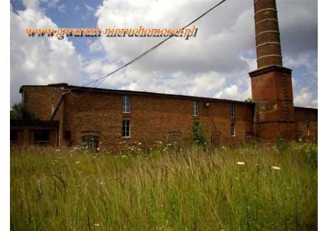 Fabryka, zakład na sprzedaż - CEGIELNIA Bojanowo, Rawicki, 3390,6 m², 1 560 000 PLN, NET-25740724