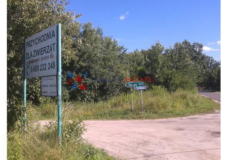 Działka na sprzedaż - Szczęsne, Grodzisk Mazowiecki, Grodziski, 3434 m², 522 000 PLN, NET-7529/2566/OGS