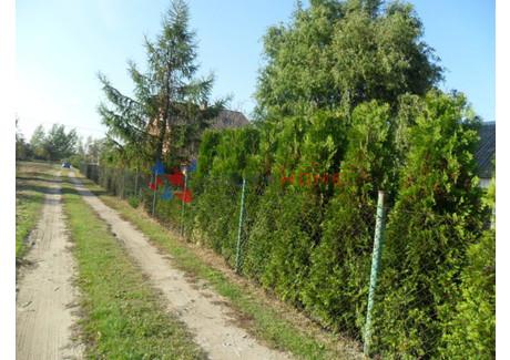 Działka na sprzedaż - Czachówek, Góra Kalwaria, Piaseczyński, 1600 m², 150 000 PLN, NET-8988/2566/OGS