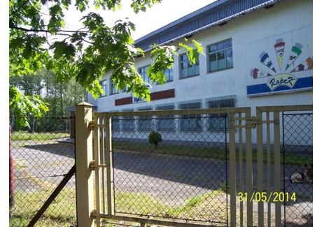 Fabryka, zakład na sprzedaż - Droga na Borzęcin Przyborów, Borzęcin (gm.), Brzeski (pow.), 620 m², 500 000 PLN, NET-177/15/14