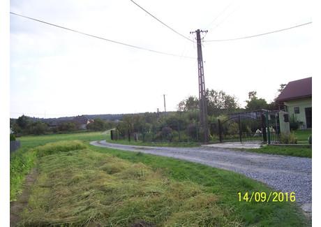 Działka na sprzedaż - Kamionka Jasień, Brzesko (gm.), Brzeski (pow.), 2900 m², 95 000 PLN, NET-183/21/14