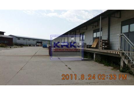 Centrum dystrybucyjne na sprzedaż - Niepołomice, Wielicki, 5214 m², 6 500 000 PLN, NET-S/1609/N/1/2011