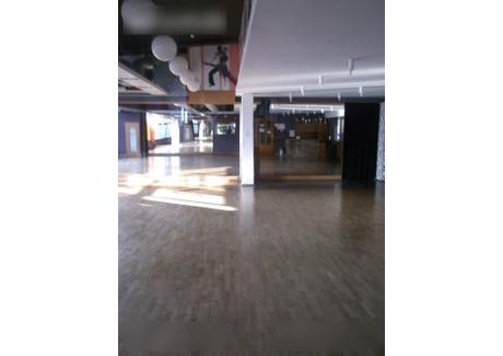 Komercyjne do wynajęcia - Katowice, 315 m², 7500 PLN, NET-glw11015825