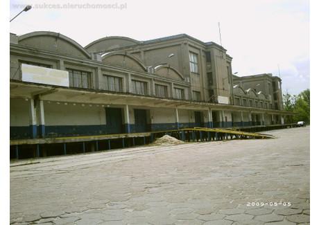 Magazyn do wynajęcia - Widzew, Łódź, Łódź M., 2250 m², 13 500 PLN, NET-SUK-HW-6601-21