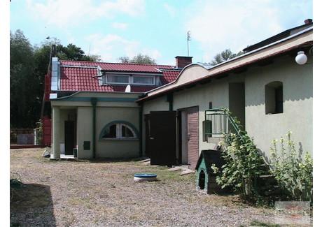 Magazyn na sprzedaż - Łowicz, Łowicki, 900 m², 400 000 PLN, NET-EXP-HS-7013-1