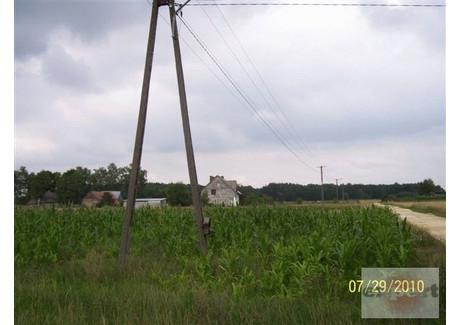 Działka na sprzedaż - Radoszewice, Siemkowice, Pajęczański, 3700 m², 25 900 PLN, NET-EXP-GS-8468