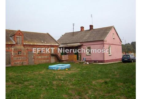 Dom na sprzedaż - Okol.śleszyna, Gm. Żychlin, Kutnowski, 120 m², 175 000 PLN, NET-DS-224