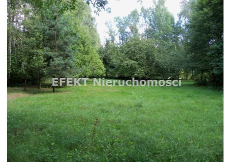 Działka na sprzedaż - Feliksin, Widzew Wschód, Łódź, Łódzki, 4209 m², 400 000 PLN, NET-GS-544