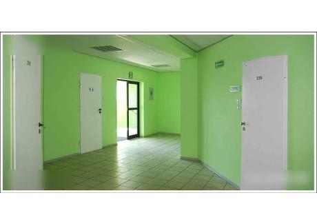 Biuro do wynajęcia - Aleksandrowska 67/93 Bałuty, Łódź, 60 m², 1080 PLN, NET-glw10525177