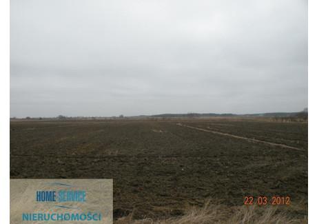 Działka na sprzedaż - Wólka, 1030 m², 60 000 PLN, NET-63206
