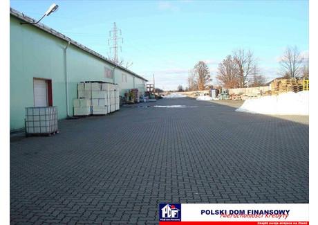 Biuro do wynajęcia - Wesoła, Warszawa, 900 m², 4050 Euro (17 132 PLN), NET-320047