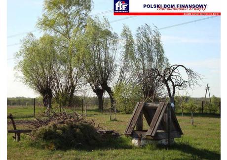 Działka na sprzedaż - Kampinos, Warszawski Zachodni, 16 300 m², 652 000 PLN, NET-324041