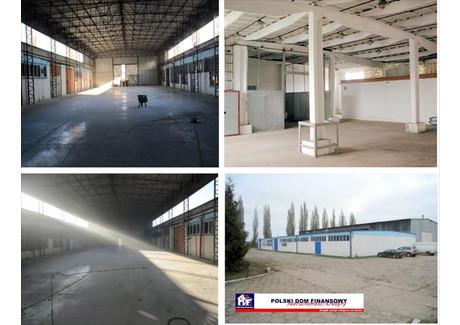 Magazyn do wynajęcia - Nowy Dwór Mazowiecki, Nowodworski, 750 m², 6000 PLN, NET-324872