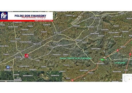 Działka na sprzedaż - Grodzisk Mazowiecki, Grodziski, 9750 m², 460 000 PLN, NET-324809