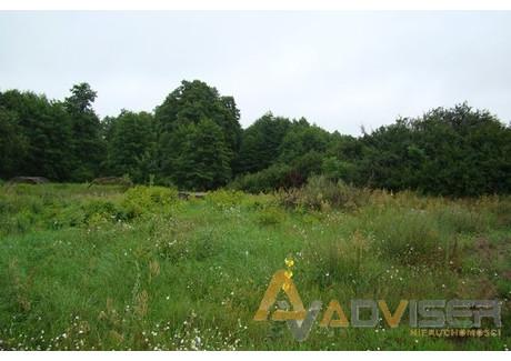 Działka na sprzedaż - Wólka, Leszno, Warszawski Zachodni, 1800 m², 288 000 PLN, NET-ADV-GS-20132-52