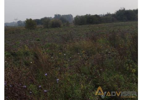 Działka na sprzedaż - Bieniewo-Parcela, Błonie, Warszawski Zachodni, 48 600 m², 2 430 000 PLN, NET-ADV-GS-20504-69