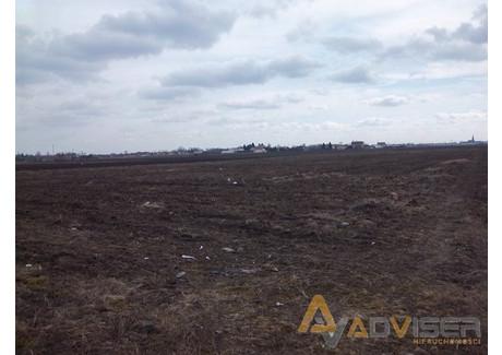 Działka na sprzedaż - Duchnice, Ożarów Mazowiecki, Warszawski Zachodni, 10 000 m², 1 256 000 PLN, NET-ADV-GS-20535-9