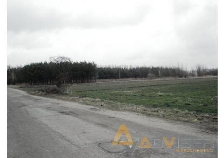 Działka na sprzedaż - Żuków, Grodzisk Mazowiecki, Grodziski, 6300 m², 157 500 PLN, NET-ADV-GS-20776