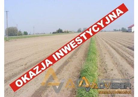 Działka na sprzedaż - Nowy Drzewicz, Wiskitki, Żyrardowski, 12 900 m², 220 000 PLN, NET-ADV-GS-20250-68