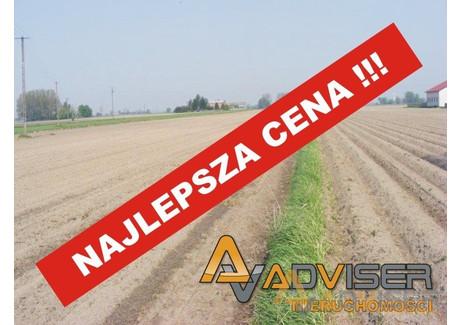 Działka na sprzedaż - Nowy Drzewicz, Wiskitki, Żyrardowski, 13 200 m², 259 000 PLN, NET-ADV-GS-20271-22
